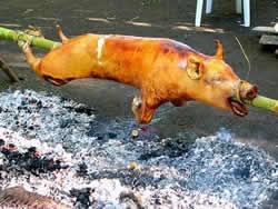 cerdo asado, Cuba